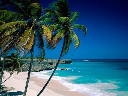 Exotic Surf Spots